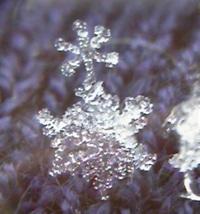 Snowflake1102111601