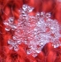 Snowflake1102111526
