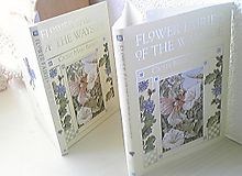 Flowerfiaries_books_caver