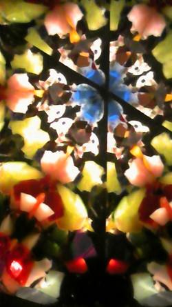 Kaleidoscope_sekii_kazuo_cat03
