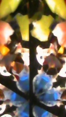 Kaleidoscope_sekii_kazuo_cat04_2