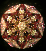 Kaleidoscope_sekii_kazuo_valkyrie02