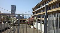 20140427kofu02_eiwa2