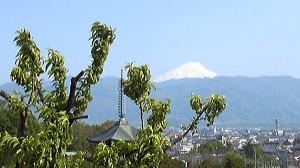20140427kofu06_fuji2