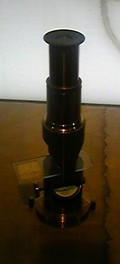 Kahaku_microscope82