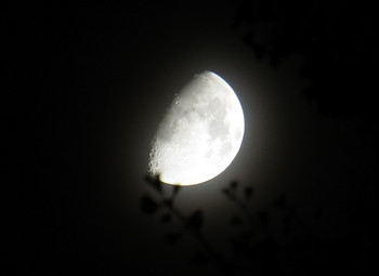 Moon20141003_2122lsw_93th_30a_1185