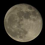 Moon20141009_2154ese_153th_98_47a_1