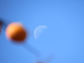 Moon20141016_1045w_218th_48_21a_q09