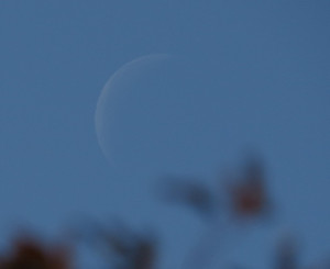 Moon20141019_1143ws_249th_21_31a_q0