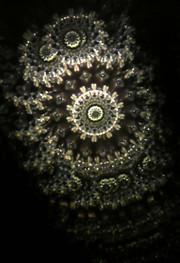 20141105sekiikazuo_kaleidoscope03