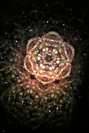 20141105sekiikazuo_kaleidoscope39sa
