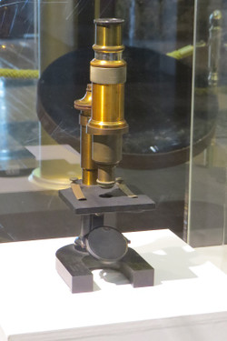 20150304microscope16