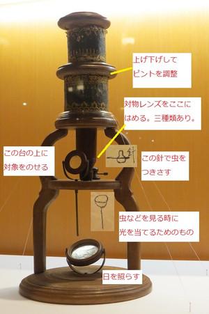 Microscope_kobayashi0101