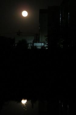 150604_2038tagoto_moon02
