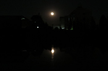 150604tagoto_moon03_7713