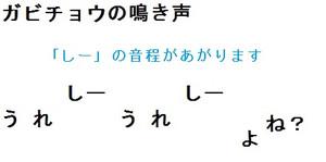 Tori_gabicho_nakigoe_3