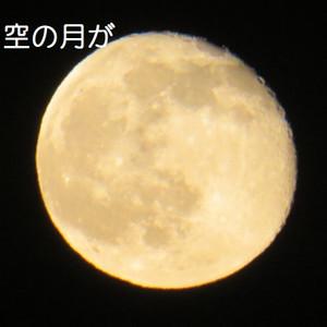 5_150604_2044tambo