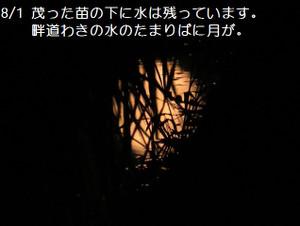 7_150801_1959_164th_98_8atambo