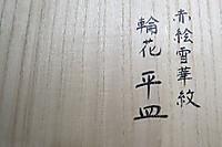 20170404hasatanisan1