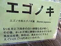 20180708asakura3