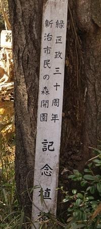 20200320_niiharu_sakura3