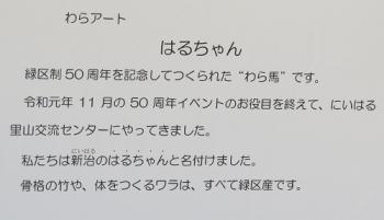 20200320_niiharusatoyama5