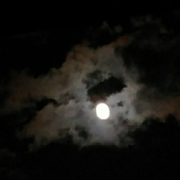 S42_mooncatcher20200411_0032